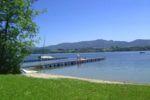 naturparadies-am-wallersee